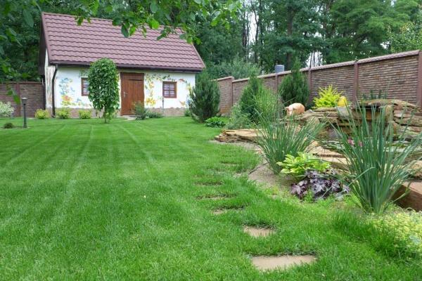 Какой газон выбрать для сада?