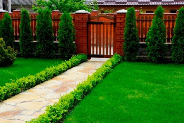 Приемы озеленения дачного участка