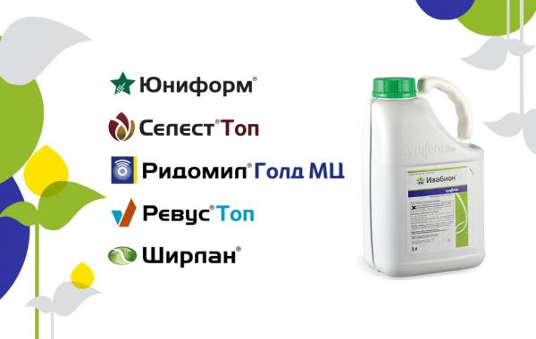 Агрохимикаты Syngenta® для личного подсобного хозяйства